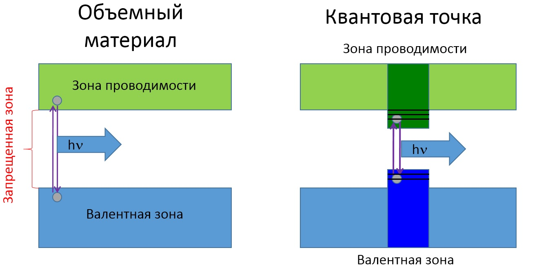 presentation1_Fig3