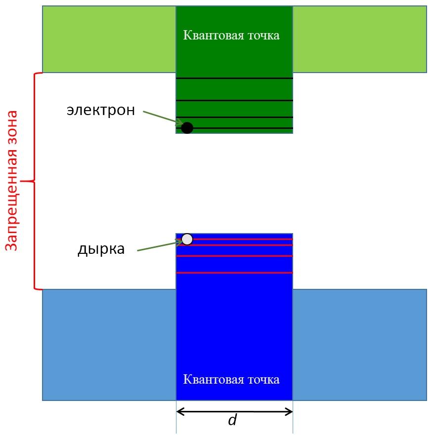 presentation1_Fig5